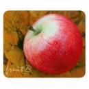 Podložka pod myš, Červené jablko, Logo