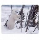 Podložka pod myš, Lední medvěd, Protiskluzová, 24x19cm, 0.4mm, Logo